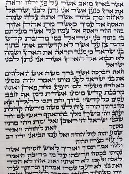 Picture of Torah scroll sefaradi mehudar
