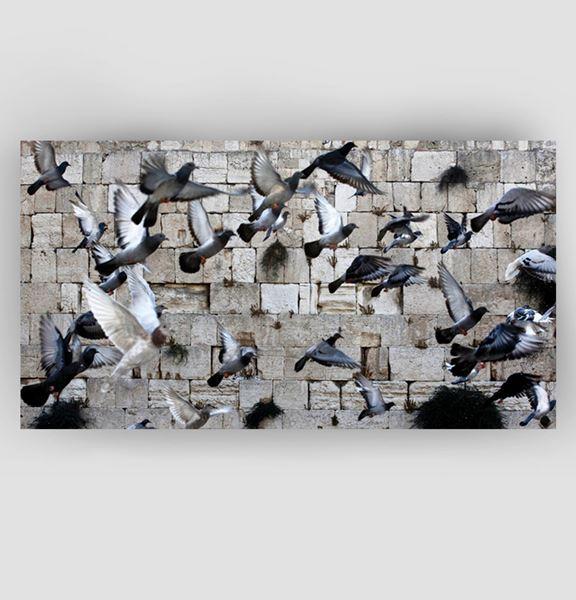 Picture of Doves in prayer