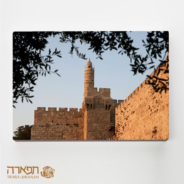 Picture of Tower of David