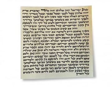 "Picture of קלף למזוזה ספרדי גובה 10 ס""מ"
